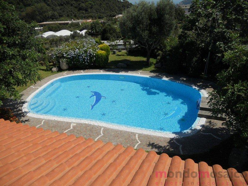 mosaico piscina 2